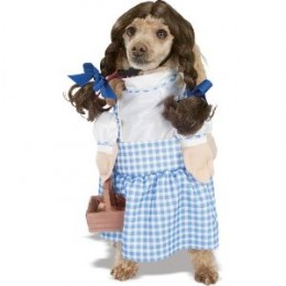 How about a great Dorothy costume for your dog? See left for the link.