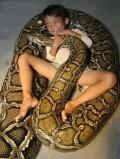 Pet Anaconda