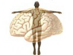 The Mind-Body Distinction
