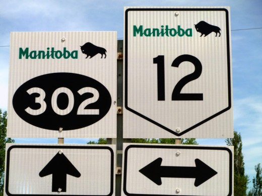 The Canadian province of Manitoba uses the buffalo as its official symbol on many road signs