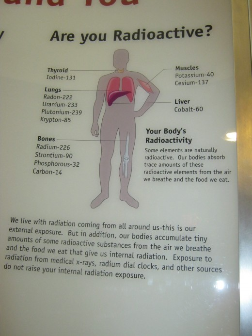 """Explaining how the human body is actually composed of parts that are """"radioactive."""""""