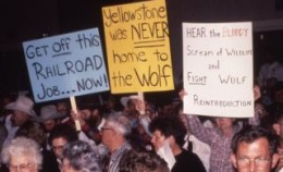 Wolf reintroduction protest 1995