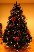 Christmas Tree Tips - How To Keep And Cope With Your Christmas Tree