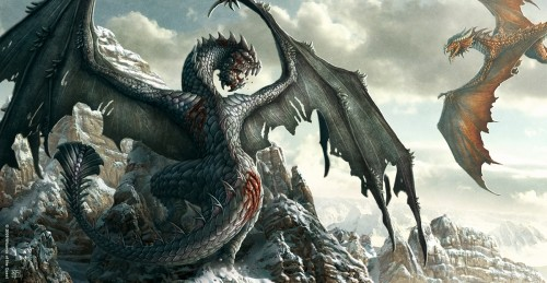 The dragon is a fierce, protective animal spirit guide.