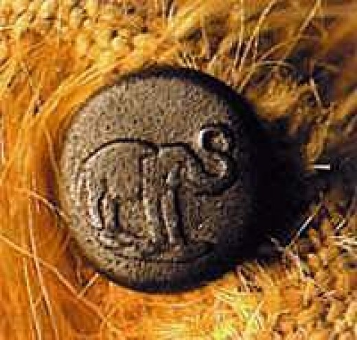 First Steiff Button - Designating a Real Steiff Creation - Later this Button was Changed to the Label of Steiff