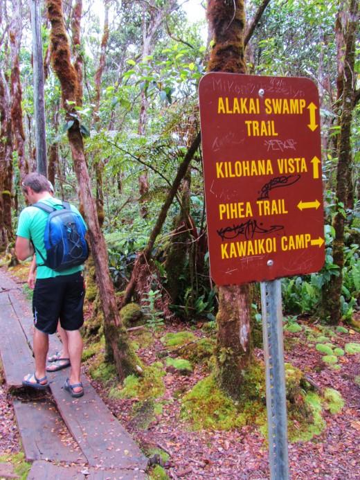at the Pihea-Alakai crossroads