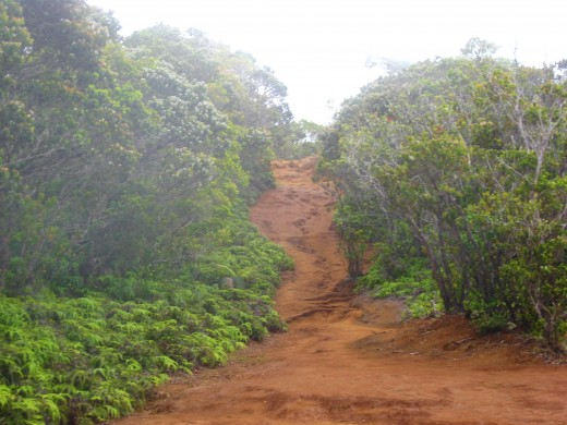 the red dirt trail can become muddy and slippery when it's raining