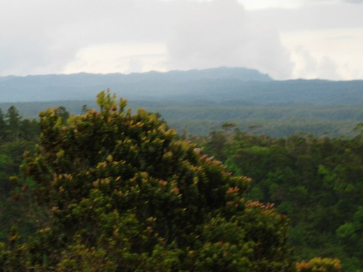 view of Mt. Waialeale