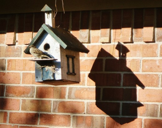 Our birdhouse and shadow against our home.