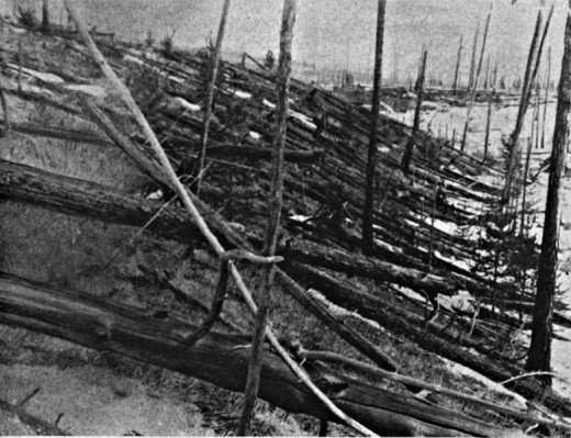 Tunguska Event affected area 19 years after the blast
