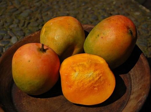 Mangga gedong gincu, a cultivar of mango, Mangifera indica, from Tomo, Sumedang, West Java, Indonesia.
