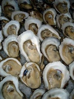 Oysters , Recipes For The Most Famous Oyster Dishes, And Oyster Information