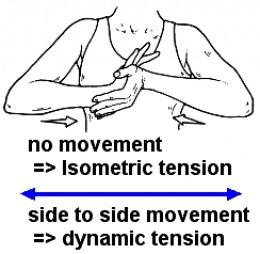 DynamicT