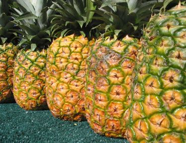 Ahh, there is nothing like fresh pineapple!
