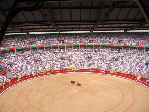 Plaza de Toros watching the bulls we ran with earlier that day battle the matador.