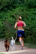 The Top 10 Most Athletic Dog Breeds