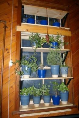 Indoor Herb Garden South Facing Window