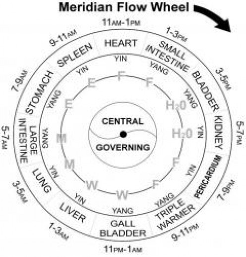 The Guide To The 12 Major Meridians of the Body
