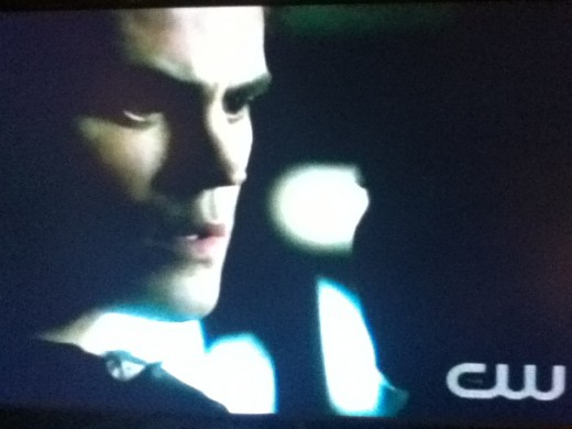 Stefan has lost his humanity, but you can still see glimpses of his feelings for Elena.