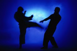 Top 10 Martial Arts Based On Totality