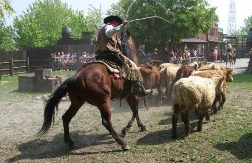 Cowboy roping and riding.
