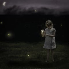 Firefly Season from kpauli Source: flickr.com