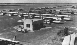 Stearmans during WW2 being used for flight training