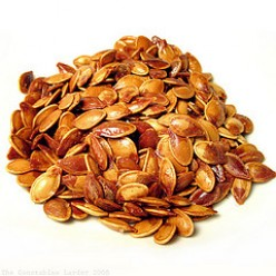 Pumpkin Seeds Benefits, Calories and Nutrition: Toasted Pumpkin Seeds Recipes