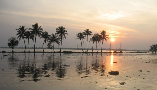Sun and trees mirrored on a glistening lagoon in Kerala Backwaters