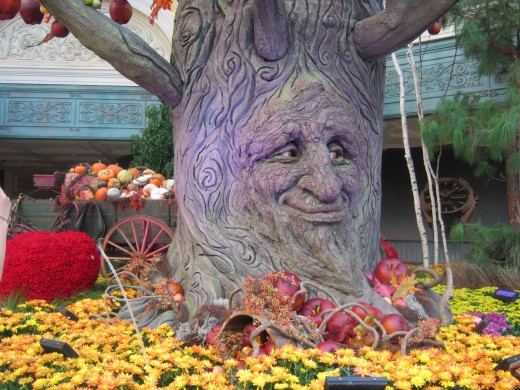 "More pretty Fall decorations from the Bellagio Hotel and Conservatory, here in Las Vegas. This tree's ""face"" actually would move and make expressions, and it's ""eyes"" would move as well. Very interesting decoration!"