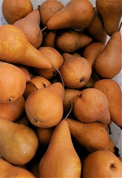 Feeding the Family on a Budget Using Seasonal Foods - Part Three: The Pear