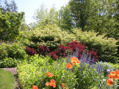 Photo 15 - Using some creativity, creating borders with shrubs and flower gardens can be accomplished.  I love the color combinations here too.