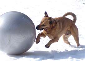 Triebball can be played in any weather.