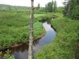 The winding course of the Oswegatchie River, as seen from High rock.