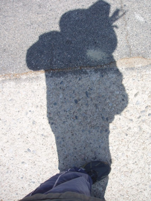 Jung talks about our shadow parts.  We often split off from our shadows and label them as bad.  Not good, not wise!