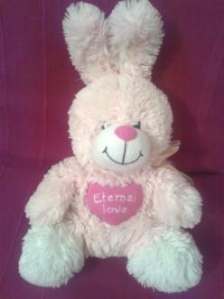 How I Became a Plush Bunny