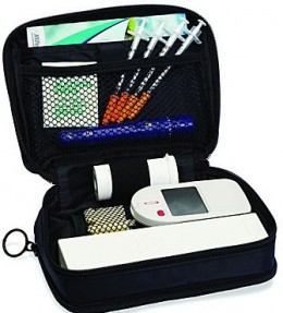 Handbags, Bible Bags, and coming soon...Diabetes Test Kit Bags!