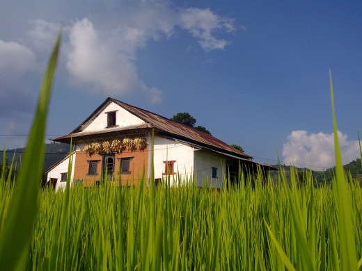 A traditional house in rural Nepal. There are more than 35 hundred villages in Nepal and more than 80 percent of the population live in villages and small towns.