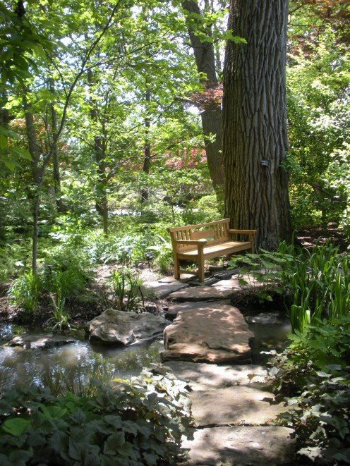It doesn't get much better than this!  This seems like a good picture to end with, with shade, a bubbling brook, a bench, shade and song birds here and there.  A place to relax, rewind and recharge.  Peace, love, and joy are good things to think on.
