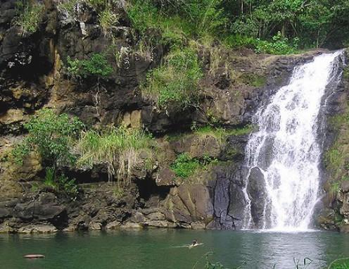Waimea Falls Copyright Ruth Kongaika