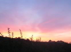 Life at Dawn