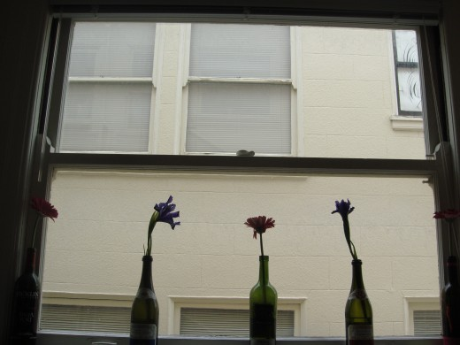 Lonely flowers against the windowsill, a metaphor
