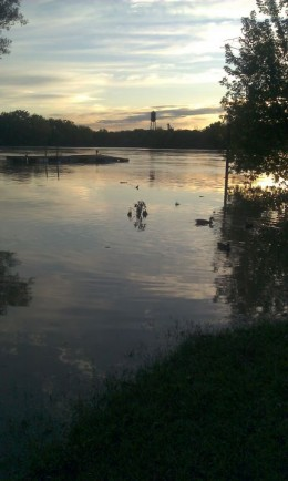 A pic I took almost at dusk, the water was in a persons yard.