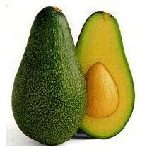 Avocado for healthy hair