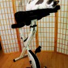 My Cat's Review of My FitDesk Exercise Bike