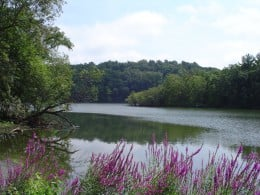 One of five local lakes.