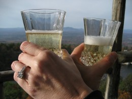 My son and daughter-in-laws engagement...he asked her on Mohonk Mountain.