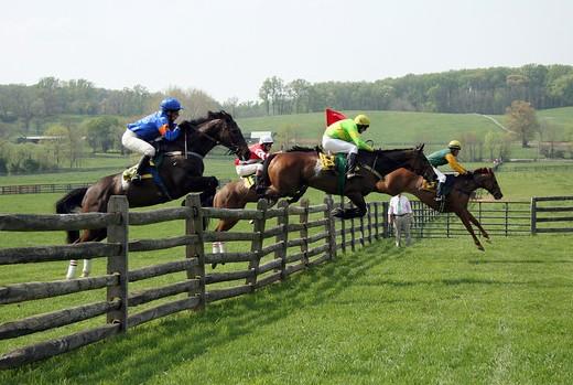 Horses jump a fence at the Maryland Hunt Cup