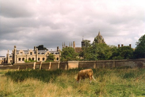 The rear of Peterhouse, Cambridge, United Kingdom, from Coe Fen
