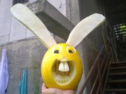A pomelo smiles flashing its two big teeth.
